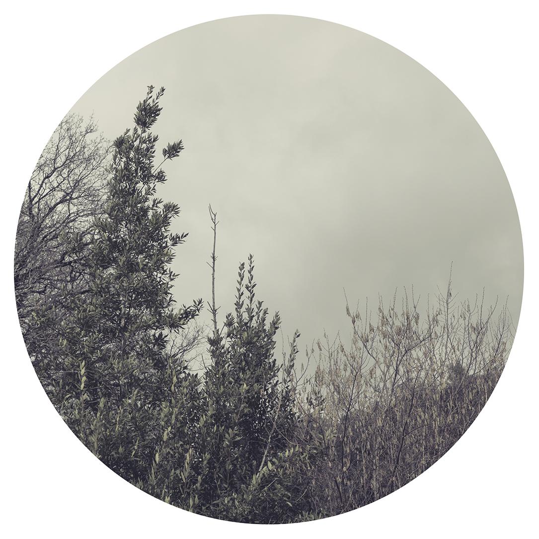 fotografia_decorativa_santander